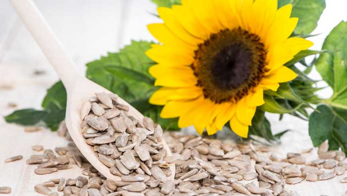 Sunflower Seeds for Fair & Glowing Skin