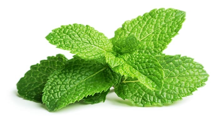 Crushed Mint Leaves