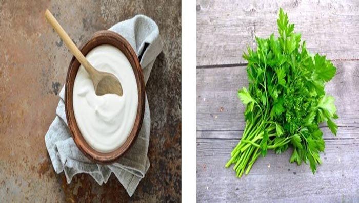 Yogurt And Parsley
