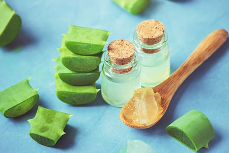 Aloe Vera and Curd for Hair