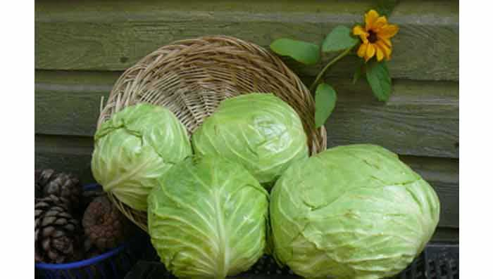 Cabbage & Potatoes for Glowing Skin