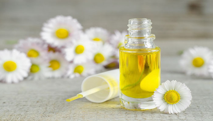 chamomile for skin and face