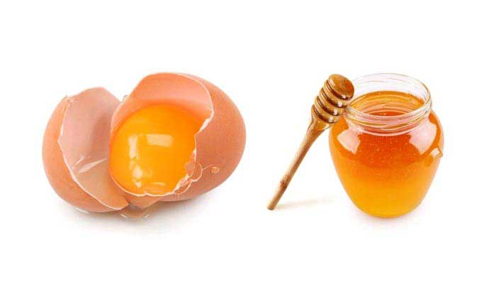 Egg & Honey Mask for Thick Hair