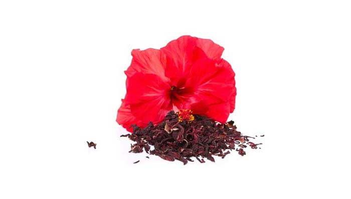 Hibiscus for Longer Thicker Hair