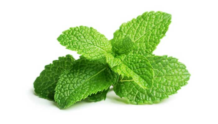 Mint Leaves Face Pack For Skin Whitening And Fair Skin
