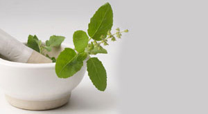 10 Amazing Benefits of Tulsi for Healthy Skin