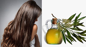 6 Benefits Of Tea Tree Oil For Your Hair