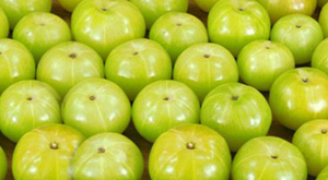 Amla Benefits for Hair