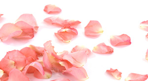 why rose water is must in every household
